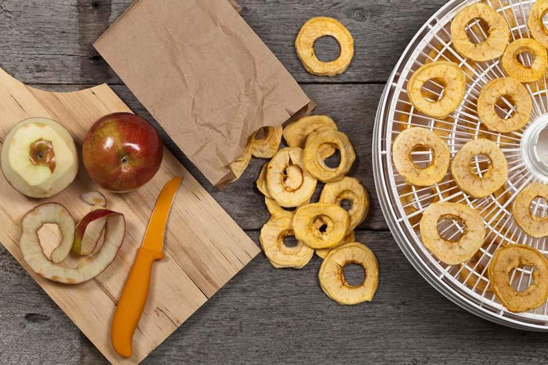 Selbstgemachte Apfelchips mit dem Dörrautomaten
