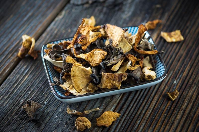 Pilze trocknen leicht gemacht