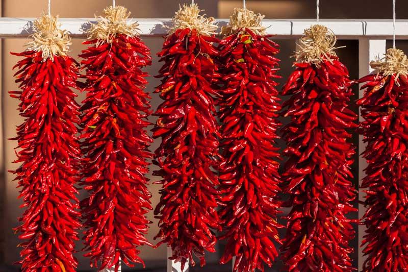Chilis zu Rista geflochten