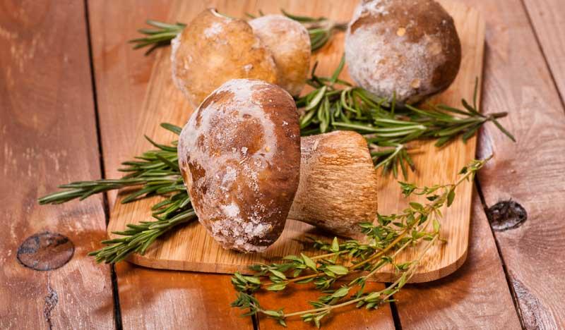 Steinpilze lassen sich leicht einfrieren und so konservieren.
